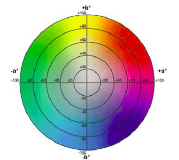 Pourquoi la gestion des couleurs est elle nécessaire ? | Sony FR