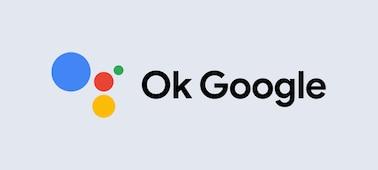 Logo OK Google